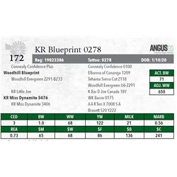 KR BLUEPRINT 0278