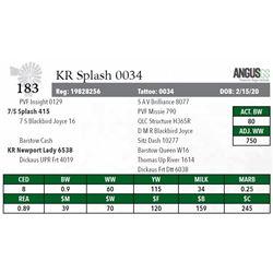 KR SPLASH 0034