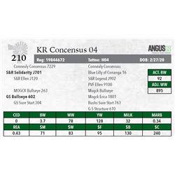 KR CONCENSUS 04
