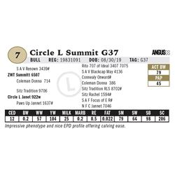 Circle L Summit G37