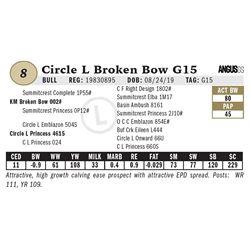 Circle L Broken Bow G15