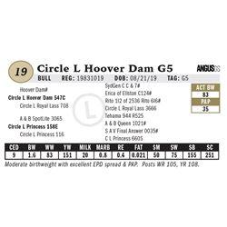 Circle L Hoover Dam G5