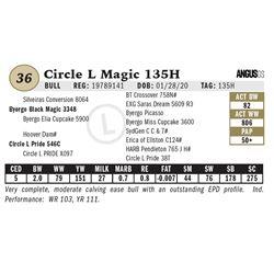Circle L Magic 135H