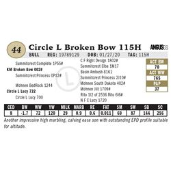Circle L Broken Bow 115H