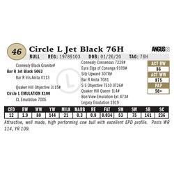 Circle L Jet Black 76H