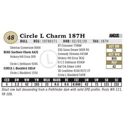 Circle L Charm 187H