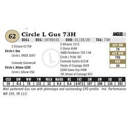 Circle L Gus 73H