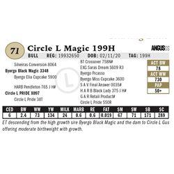 Circle L Magic 199H