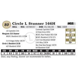 Circle L Stunner 166H