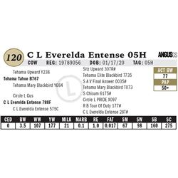 C L Everelda Entense 05H