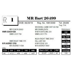 MR Bart 26499