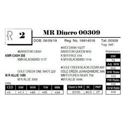 MR Dinero 00309