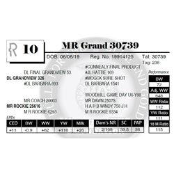 MR Grand 30739