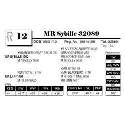 MR Sybille 32089