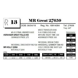 MR Great 27659