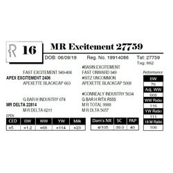MR Excitement 27759