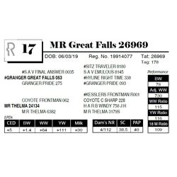 MR Great Falls 26969