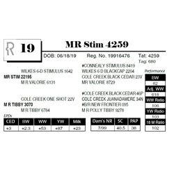 MR Stim 4259