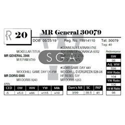 MR General 30079