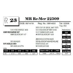 MR Re-Mer 22509