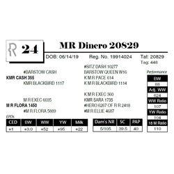 MR Dinero 20829