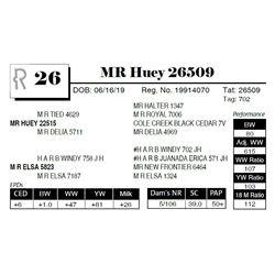 MR Huey 26509
