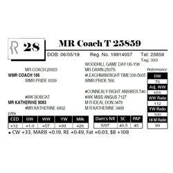 MR Coach T 25859