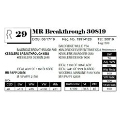 MR Breakthrough 30819