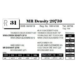 MR Density 29759