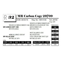 MR Carbon Copy 29709