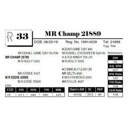 MR Champ 21889