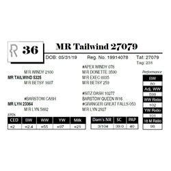 MR Tailwind 27079