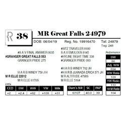 MR Great Falls 24979
