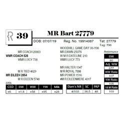 MR Bart 27779