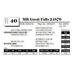 MR Great Falls 24879