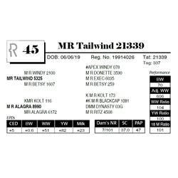 MR+C126 Tailwind 21339