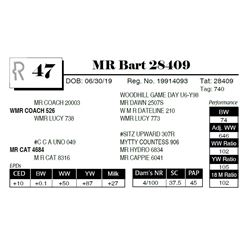 MR Bart 28409