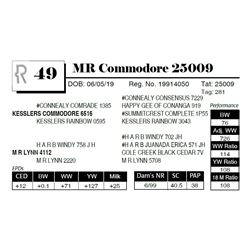 MR Commodore 25009
