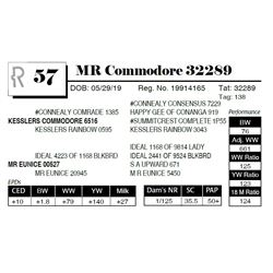 MR Commodore 32289