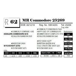 MR Commodore 25269
