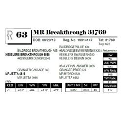 MR Breakthrough 31769