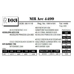 MR Ace 4499