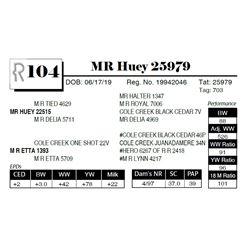 MR Huey 25979