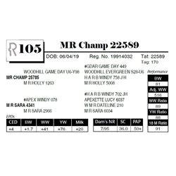 MR Champ 22589