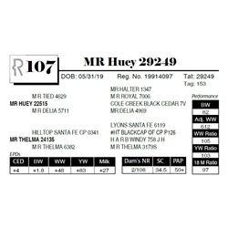 MR Huey 29249