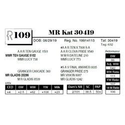 MR Kat 30419
