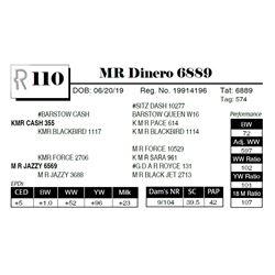 MR Dinero 6889