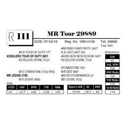 MR Tour 29889