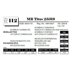 MR Titus 23319