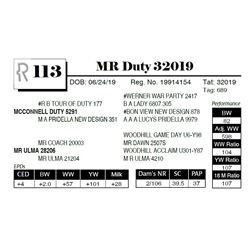 MR Duty 32019